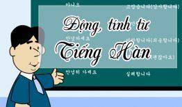 Động Từ, Tính Từ Quan Trọng Trong Tiếng Hàn