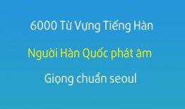 Từ vựng tiếng Hàn – 1000 từ vựng tiếng Hàn thông dụng nhất 100-150
