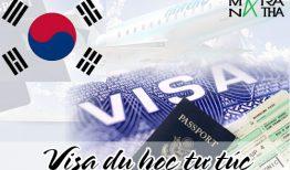 Thủ tục xin visa du học Hàn Quốc tự túc