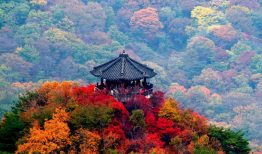 Thiên nhiên hùng vĩ của Núi Seorak – Gangwondo