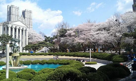Khuôn viên trường đại học Kyunghee