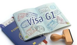 Visa Hàn Quốc G1