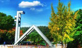 Đại học quốc gia Seoul – Seoul national university thông tin mới nhất