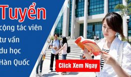 Tuyển cộng tác viên tư vấn du học Hàn Quốc, thu nhập 2000$/tháng