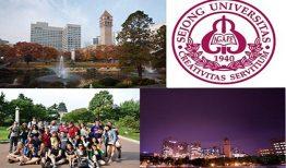 Đại học Sejong đào tạo những ngành gì?