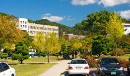 Khám phá đại học quốc gia Andong – trường công lập uy tín tại Hàn Quốc