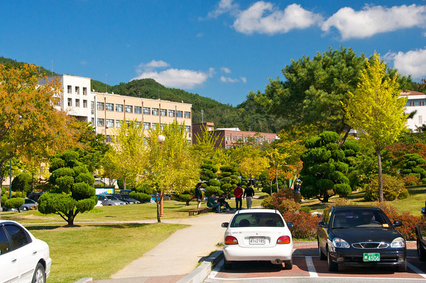 Andong national university