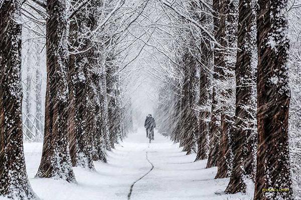 Mùa đông tại Hàn Quốc