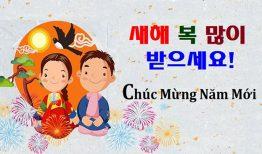 Học tiếng Hàn chủ đề năm mới