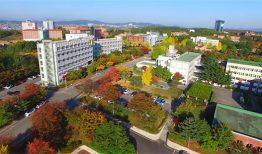 Các chính sách học bổng của đại học Daegu Hanny