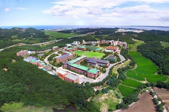 Đại học quốc tế Handong