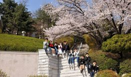 Cập nhật học bổng của đại học Kookmin năm 2019 – 2020
