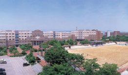 Các ngành đào tạo, học phí của trường cao đẳng nghề Yeungjin