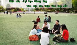 Sinh viên đại học Chung Ang có dễ tìm việc làm thêm không?